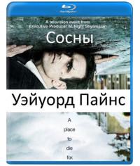Уэйуорд Пайнс (Сосны) (1-2 сезон) [Blu-ray]