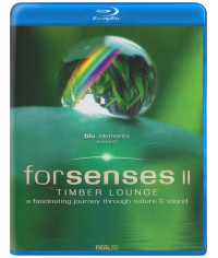 Forsenses II - Timber Lounge • A Fascinating Journey through Nat