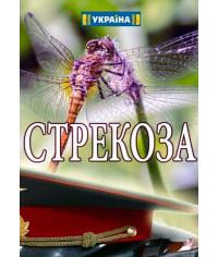 Стрекоза [DVD]