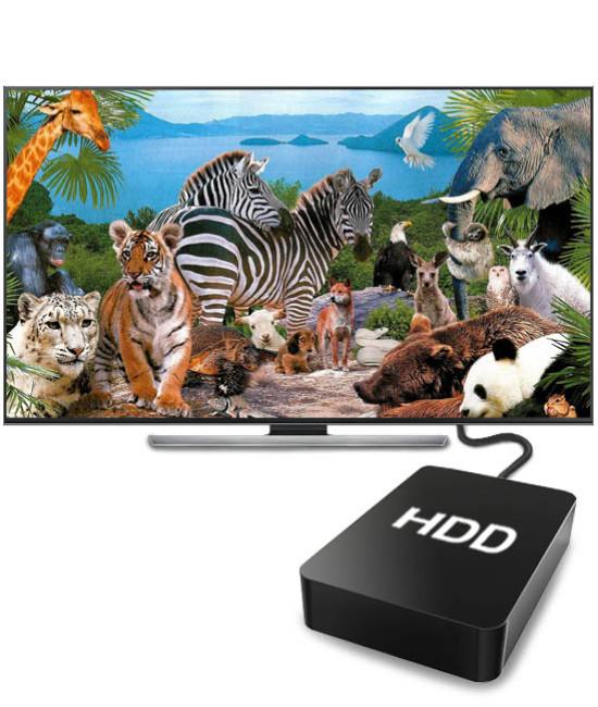 Коллекция документальных фильмов HD (1Тб)