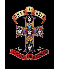 Guns N' Roses - Appetite For Destruction [DVD]