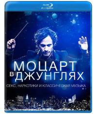Моцарт в джунглях (1-4 сезон) [4 Blu-ray]