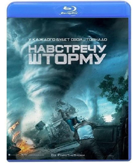 Навстречу шторму [Blu-ray]