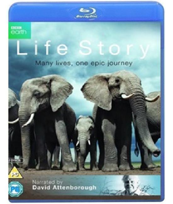 История Жизни [4 Blu-ray]