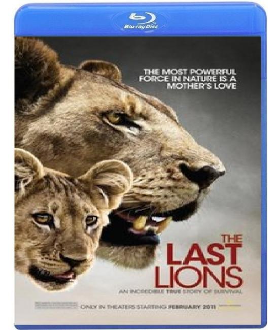 Последние львы [Blu-Ray]