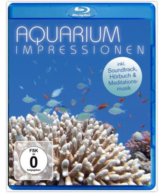 Aquarium Impressionen [Blu-Ray]