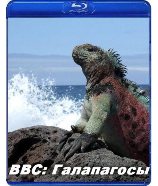 BBC: Галапагосы [Blu-Ray]