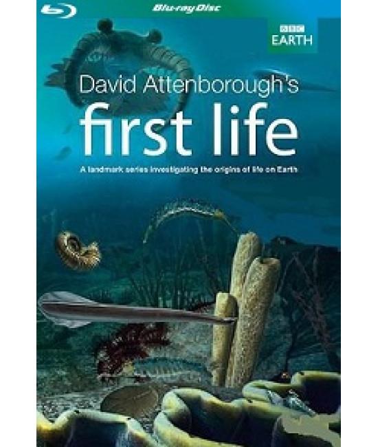 BBC: Первая жизнь [Blu-Ray]