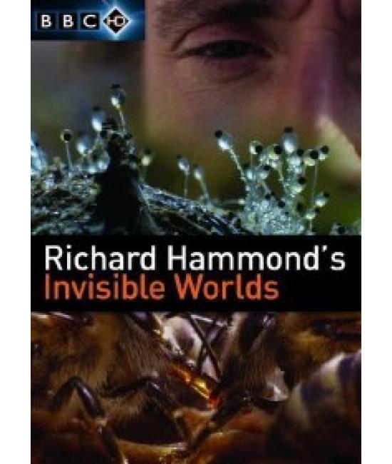 BBC: Невидимые миры [Blu-Ray]