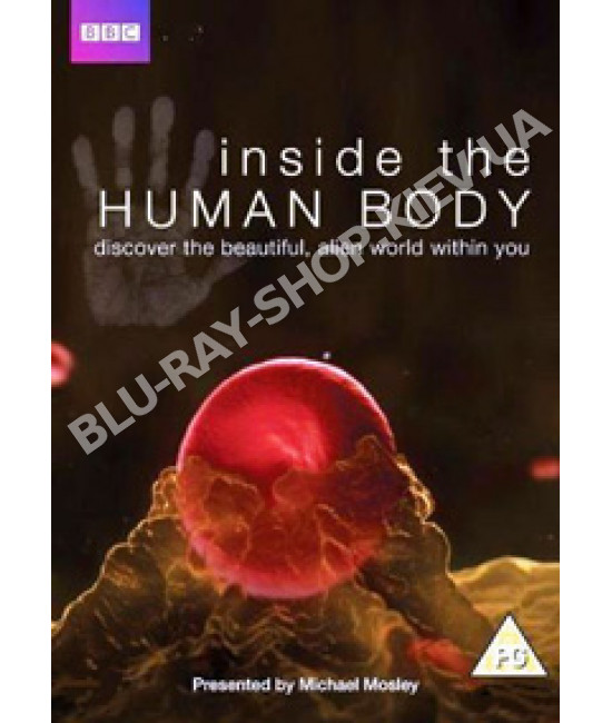 BBC Внутри человеческого тела [1 DVD]