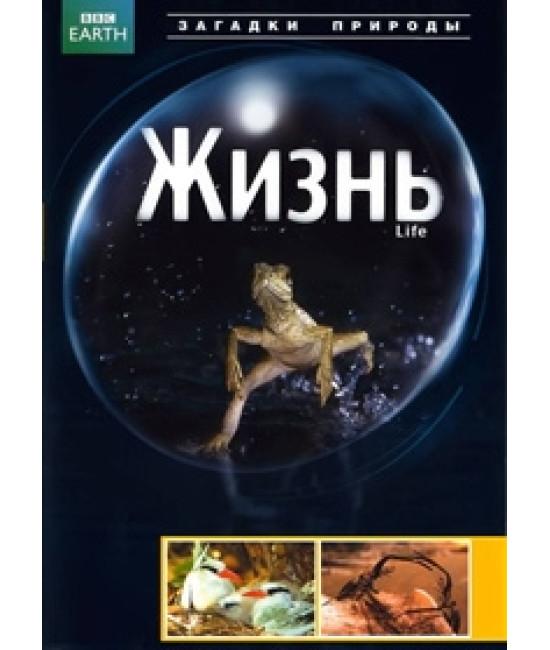 BBC: Жизнь [1 DVD]