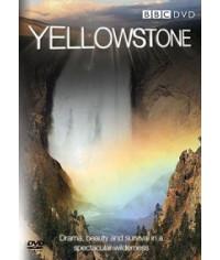 BBC Йеллоустоун: Заметки о дикой природе [1 DVD]