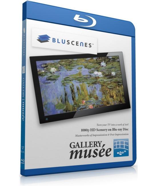 BluScenes Gallery Musee: Impressionism & Post Impressionism [Blu
