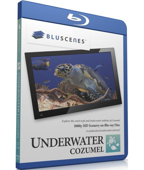 BluScenes: Underwater Cozumel [Blu-Ray]