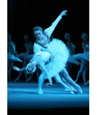 Bolshoi Ballet: Swan Lake [Blu-Ray]