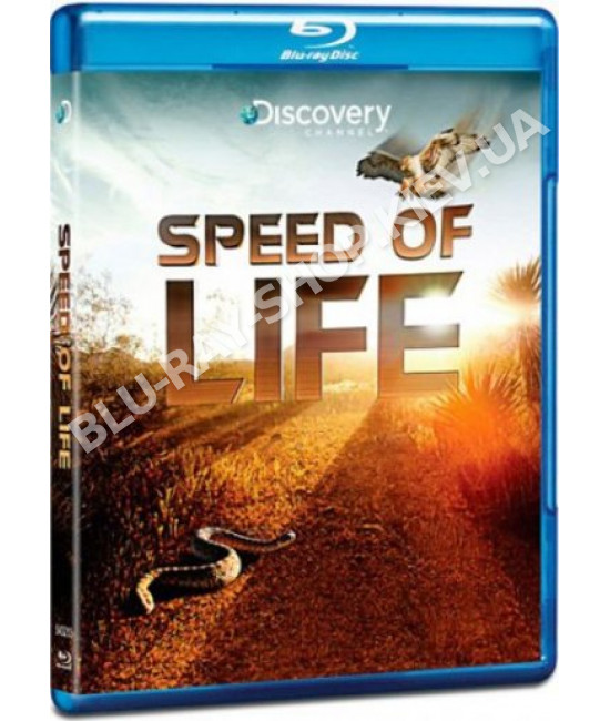 Discovery: Скорость жизни [Blu-Ray]