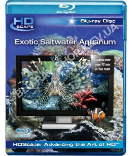 HD Окно: Экзотический Морской Аквариум  [Blu-Ray]