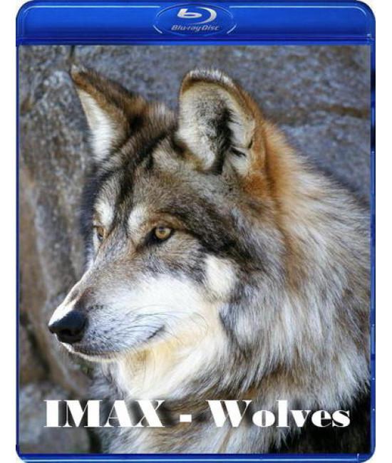 IMAX: Волки [Blu-Ray]