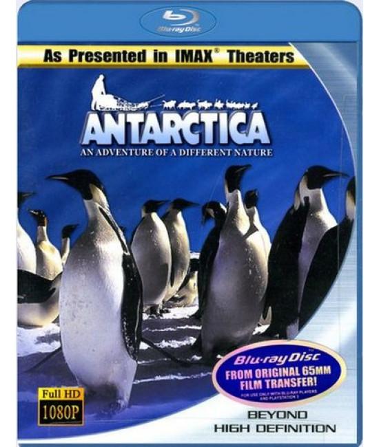 IMAX - Антарктика: Путешествие в неизвестную природу  [Blu-Ray]