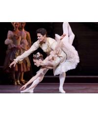 Royal Ballet: The Sleeping Beauty [Blu-Ray]