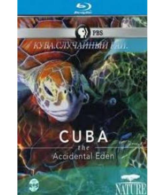 Куба. Случайный рай [Blu-ray]