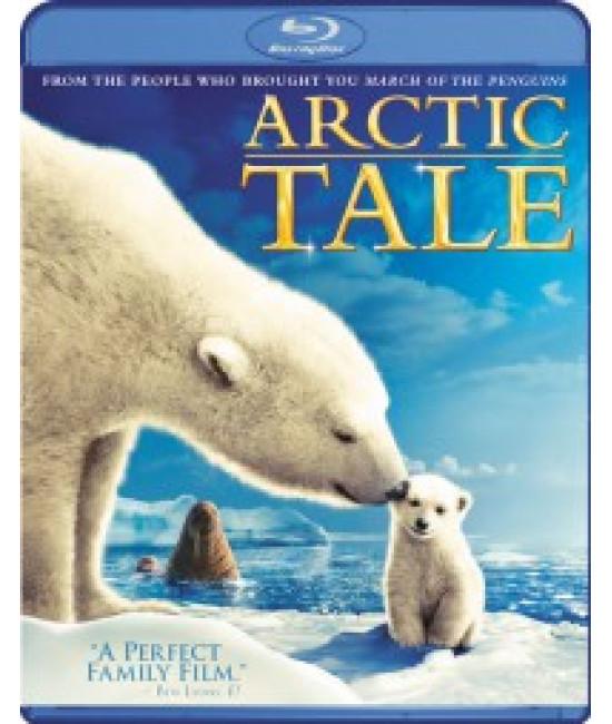 Мишка на севере / Арктическая история [Blu-ray]