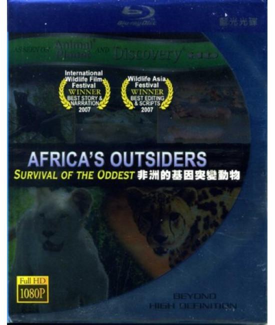 Африканские чужаки [Blu-Ray]