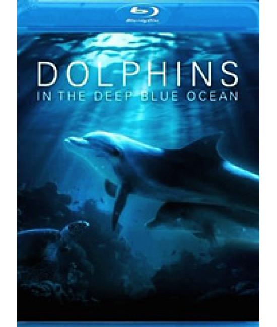 Дельфины в глубоком голубом океане [Blu-Ray]