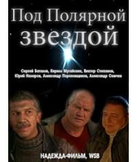 Под полярной звездой [1 DVD]