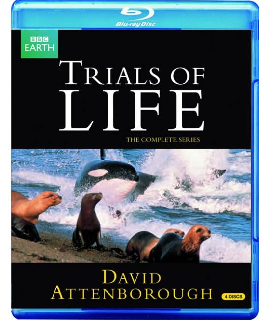 Борьба за выживание [Blu-ray] {4 Disc s Edition}