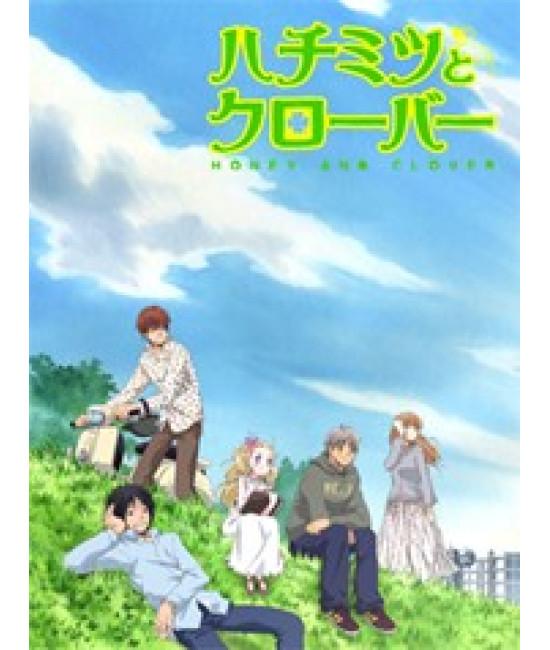 Мед и клевер (1-2 сезоны) [2 DVD]