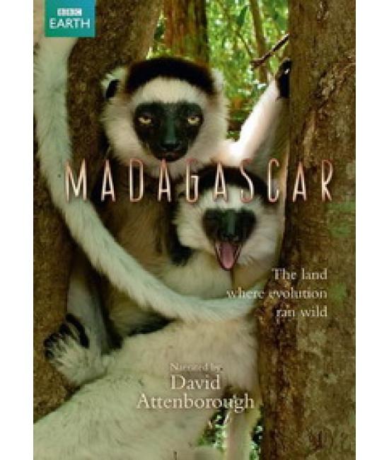 Мадагаскар: Земля, где эволюция шла своим путём [1 DVD]
