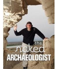 Практическая археология [1 DVD]