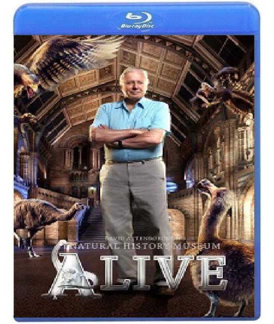 Лондонский Музей естествознания  [Blu-ray]