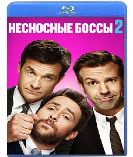 Несносные боссы 2 [Blu-ray]