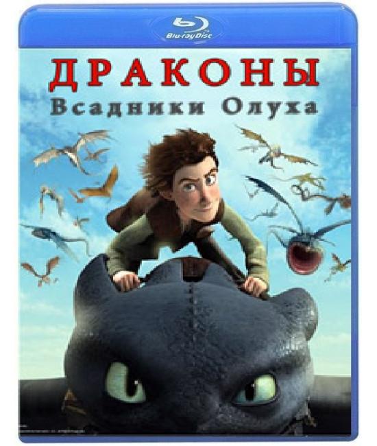 Драконы: Всадники Олуха (1 сезон) [Blu-ray]