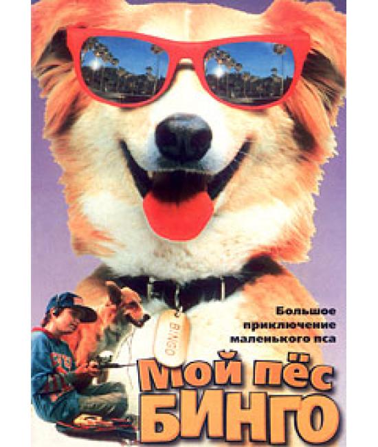 Мой пес Бинго [DVD]