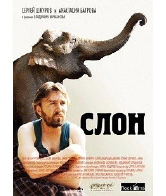 Слон [DVD]