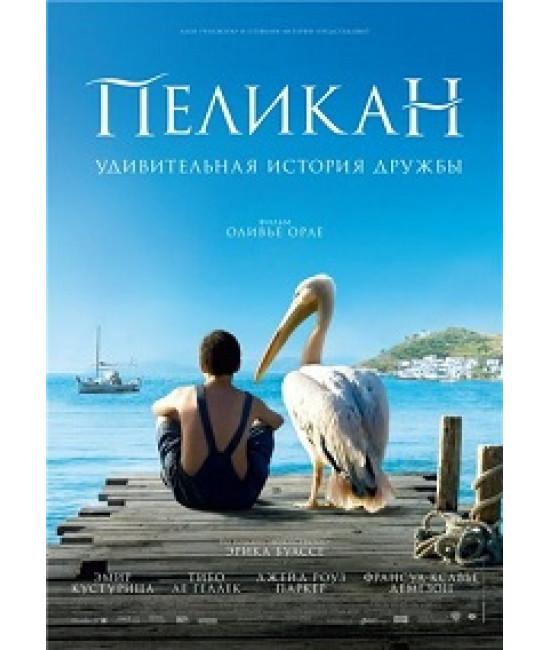 Пеликан [DVD]