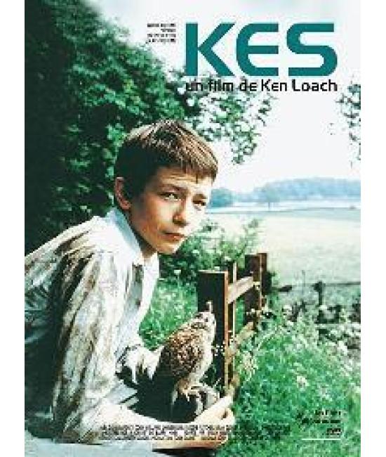 Кес [DVD]