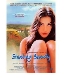 Ускользающая красота [DVD]