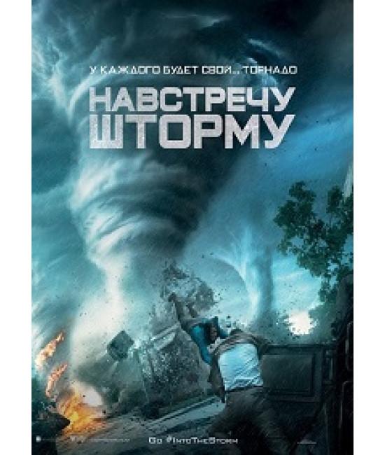 Навстречу шторму [DVD]