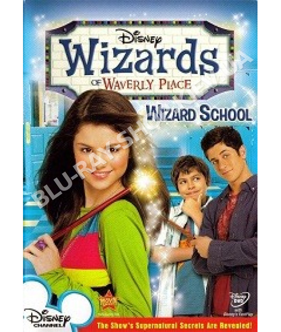 Волшебники из Вэйверли (Уэйверли) Плэйс [DVD]