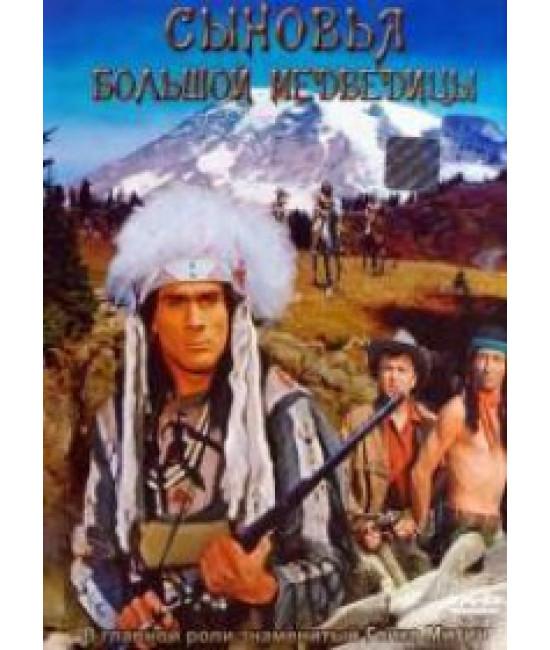 Сыновья Большой Медведицы [DVD]