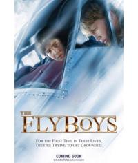 Схватка в небе (Летчики)    [DVD]