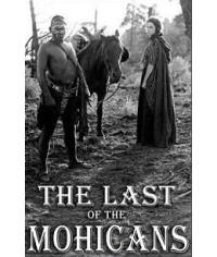 Последний из Могикан [DVD]