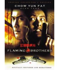 Огненные братья [DVD]