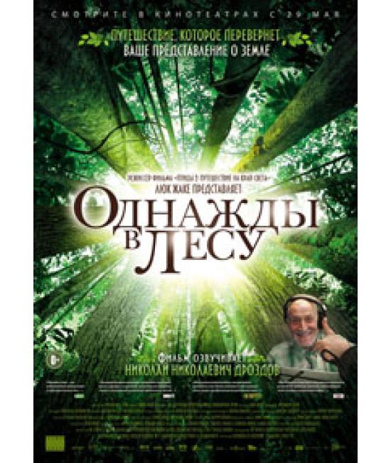 Однажды в лесу [DVD]