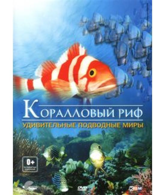Коралловый риф: Удивительные подводные миры [DVD]