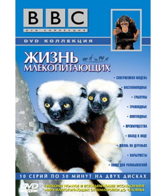 Жизнь млекопитающих [DVD]